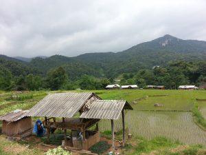 doi inthanon scenery