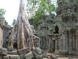 Ta Phrom Temple Cambodia